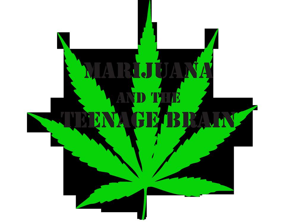 Marajuana and the Teen Brain